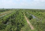 Water source a lifeline for farmers near U Minh Thuong national park