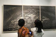 Vietnam Fine Arts Association honours artworks
