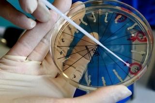 Nổ gây cháy tại phòng thí nghiệm chứa virus đậu mùa