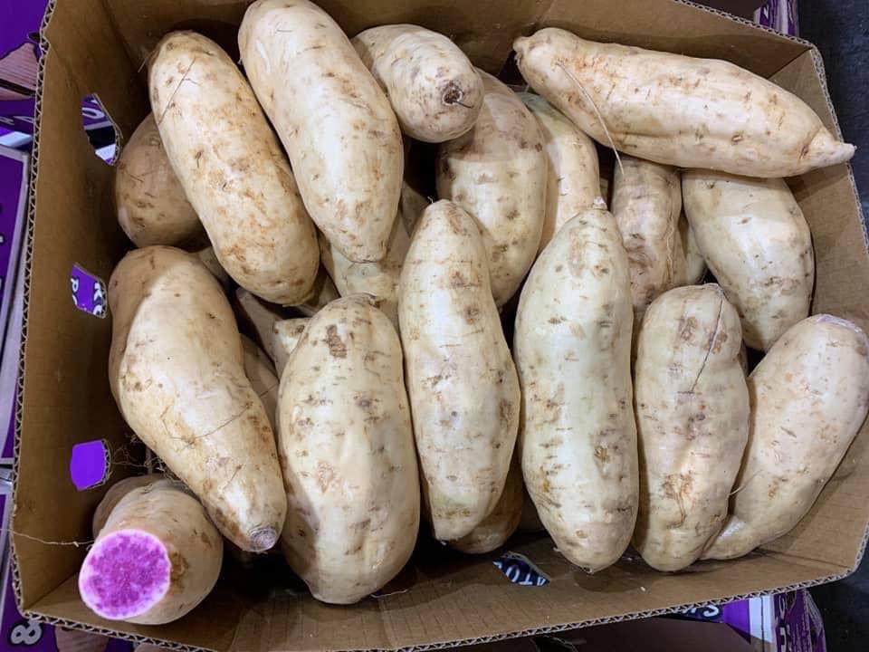 Bất ngờ củ khoai lang ruột màu tím lịm giá đắt gấp 20 lần