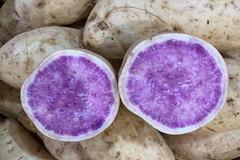 Tin lời phòng chống ung thư, ăn khoai lang tím Úc giá đắt gấp 20 lần