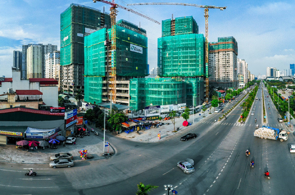 Ecoba Việt Nam: Phát triển và tiến xa nhờ 'bộ rễ' vững chắc