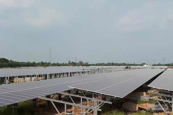 điện mặt trời,giá điện,thiếu điện,nguồn điện vô tận,điện gió,giá điện mặt trời