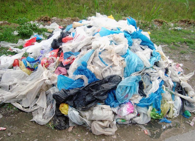 túi ni lông,TP.HCM,túi ni lông khó phân hủy,bảo vệ môi trường