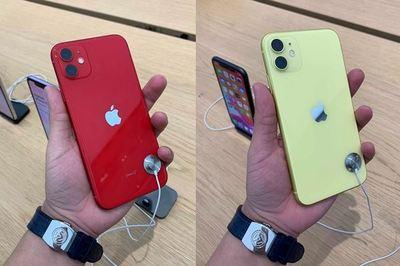 Trên tay 6 phiên bản màu sắc ấn tượng của  iPhone 11 vừa mở bán