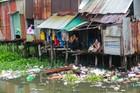 Cận cảnh các khu ổ chuột hôi thối, ô nhiễm nặng ở Sài Gòn