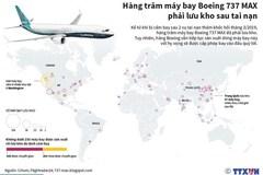 Hàng trăm máy bay Boeing 737 MAX lưu kho sau tai nạn