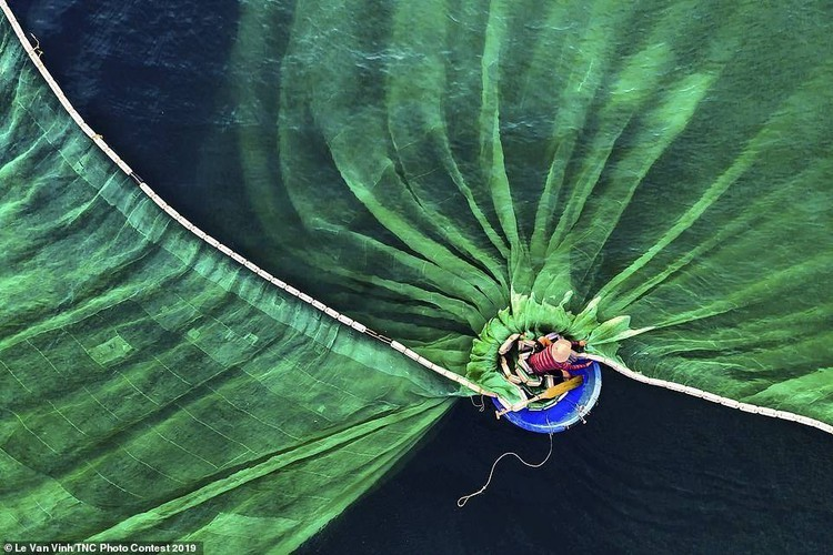 Vietnamese photographer wins The Nature Conservancy contest first prize