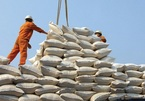 Vietnamese rice has more opportunities to enter the US