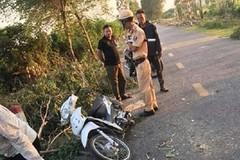 Cưa cây rơi trúng người đi đường, 1 sinh viên tử vong ở Hải Dương