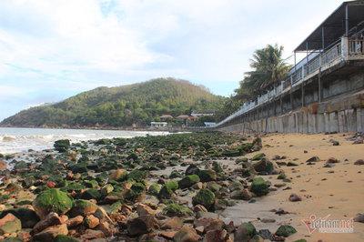 Bãi đá lô nhô 30 năm chưa từng có bỗng mất tích ở bãi biển Quy Nhơn