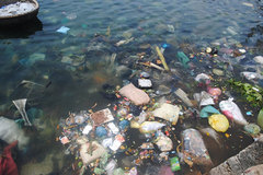 Quang Ngai seeks to solve waste nightmare