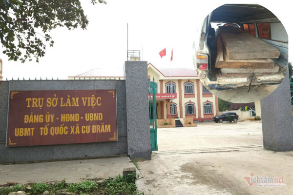 Chủ tịch xã ở Đắk Lắk lấy gỗ tang vật tiện lục bình, 'biếu' lãnh đạo