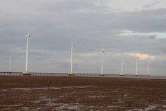 Expert calls Vietnam's shift to renewable energy indispensable