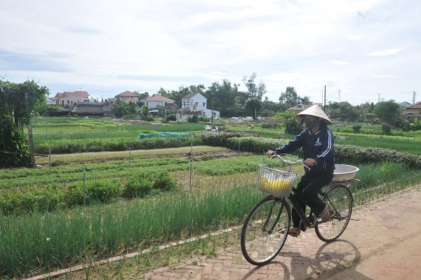 Special system needed for homestays in Hoi An