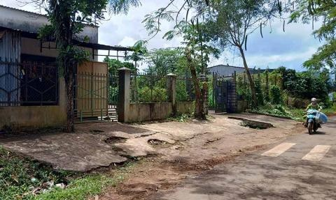 địa ốc Alibaba,lừa đảo,Nguyễn Thái Luyện