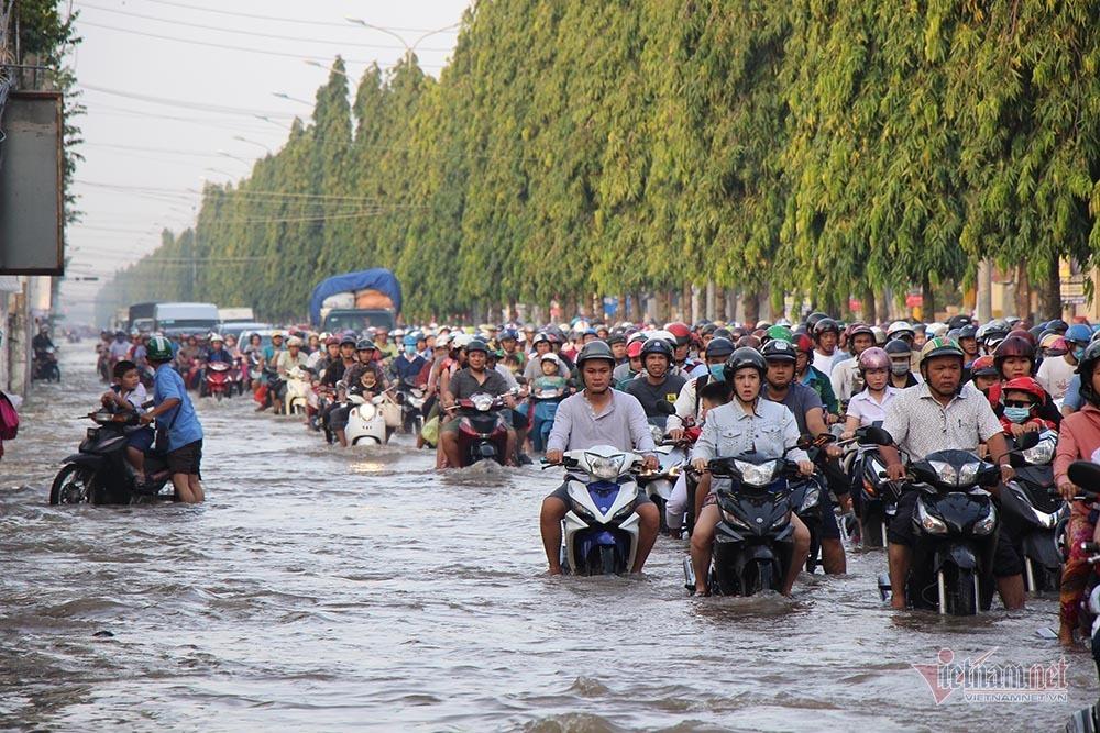 triều cường,ngập lụt,Cần Thơ