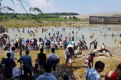 Thủy điện ngưng xả lũ, trăm người đua nhau bắt cá khủng