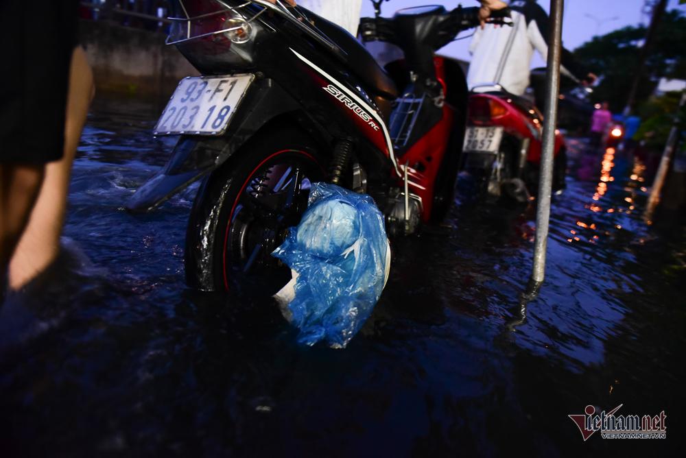 triều cường,ngập lụt,TP. HCM