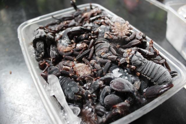 500 nghìn/kg bọ cạp, chị em không tiếc 'săn lùng' làm món nhậu đãi chồng