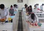 Vietnam lacks workers with vocational training skills