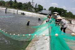 Quảng Ninh phát huy thế mạnh ngành thủy sản