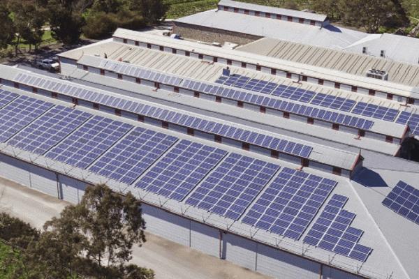 Điện mặt trời mái nhà - kênh sinh lời đặc biệt của Doanh nghiệp