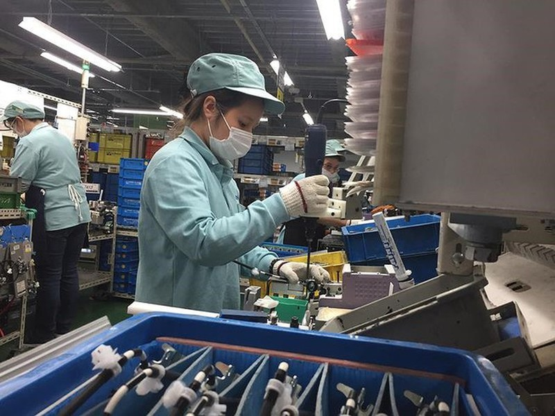 lao động Việt Nam,xuất khẩu lao động,việc làm,Nhật Bản