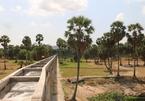 Drought, saltwater intrusion loom in Vietnam's Mekong Delta
