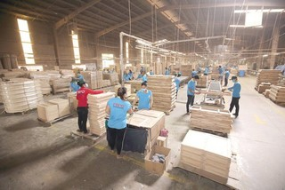 Vietnam's wood industry struggle to prevent trade fraud