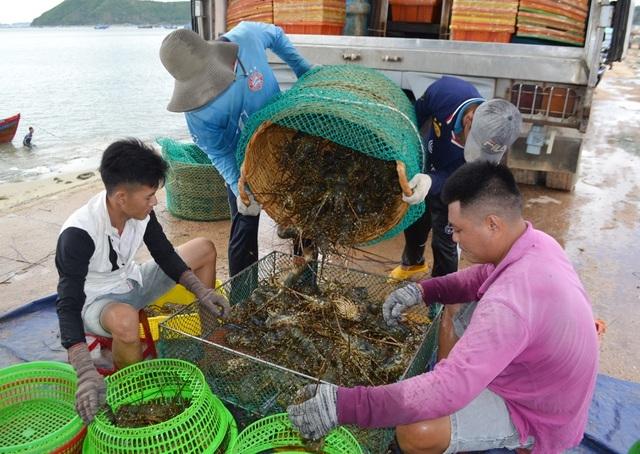 Trung Quốc đóng lối nhỏ, tôm cá rớt giá, dân Việt khóc ròng