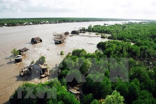 Kien Giang needs over $68.8 million to tackle coastal erosion