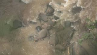 Thailand dead elephants: Officials try to retrieve bodies