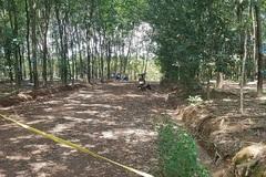 Người đàn ông chết bất thường trong lô cao su ở Bình Phước