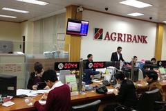 Agribank dành nguồn vốn tập trung phát triển sản xuất, kinh doanh