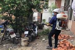 HCM City records nine deaths from dengue fever