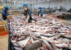 Vietnamese catfish exporters struggle to compete with rivals