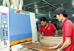 Expanding the global role for Vietnam's SMEs