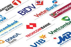 Moody's ponders downgrading 17 Vietnamese banks