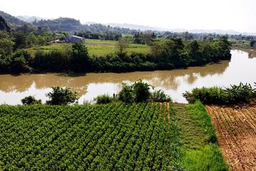 Dong Nai River sand exploitation remains unchecked