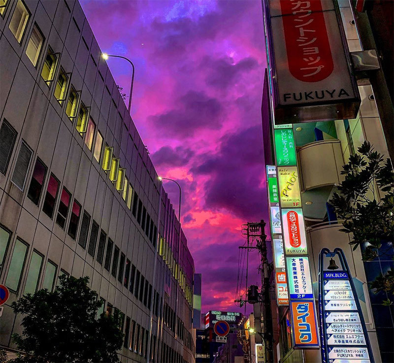 Trời đột nhiên tím bầm, Nhật báo động cao nhất
