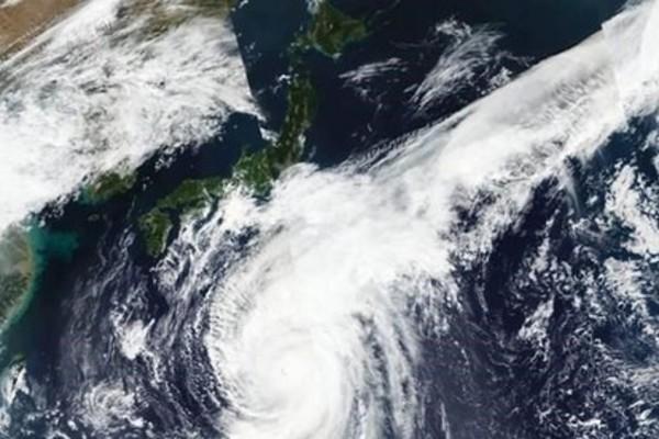 Vietnamese sailors,cargo ship,sunk,Typhoon Hagibis,Tokyo Bay