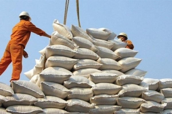 Vietnam should improve rice quality in long-term strategy