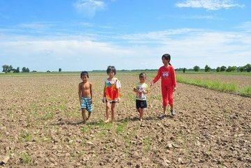 Salinity in Vietnam's Mekong Delta forecast not to worsen