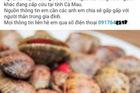 Cà Mau: Thông tin chính thức về tin đồn ăn sò lụa đỏ gây tử vong