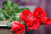 Gợi ý quà tặng 20/10 độc đáo và ý nghĩa dành cho người phụ nữ bạn yêu