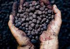 Xin xuất khẩu quặng sắt vì 'trong nước không có nhu cầu'