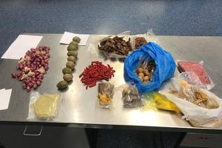 Mang 10 kg thịt chó vào Nhật, 3 người Việt bị bắt giữ