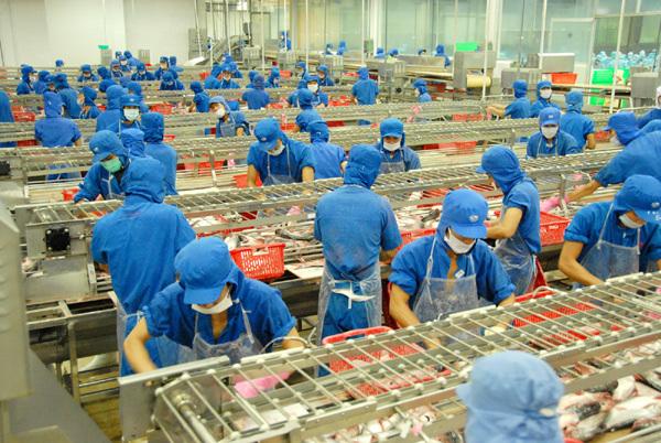 Sao Mai- Tập đoàn hùng mạnh đa ngành nghề 16 nghìn tỷ