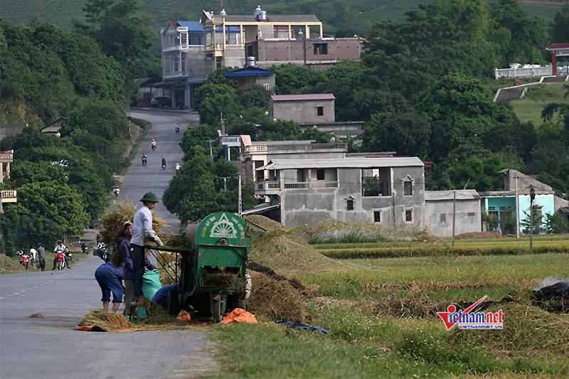 Điện Biên đạt nhiều thành tựu trong xây dựng Nông thôn mới